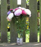 В мечтах о хрустальной вазе...