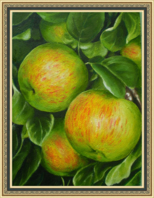 Яблоки