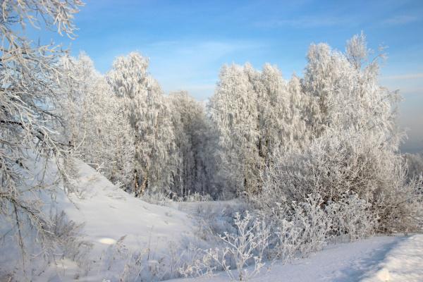 Зимняя декорация